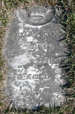 EWING, ELIZA M. - Adair County, Iowa   ELIZA M. EWING
