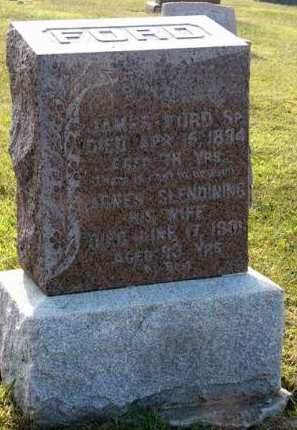 FORD, JAMES SR. - Adair County, Iowa | JAMES SR. FORD