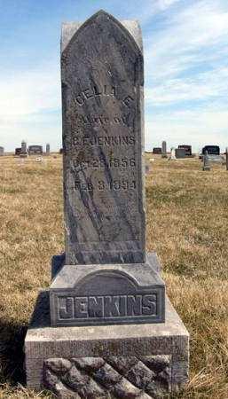 JENKINS, CELIA E. - Adair County, Iowa | CELIA E. JENKINS