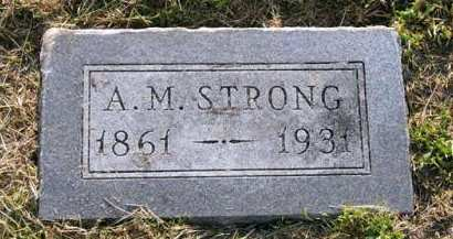 STRONG, A.M. - Adair County, Iowa | A.M. STRONG