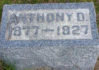 VAN VLEET, ANTHONY D. - Adair County, Iowa | ANTHONY D. VAN VLEET