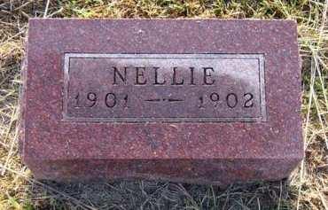 WYLLIE, NELLIE - Adair County, Iowa | NELLIE WYLLIE