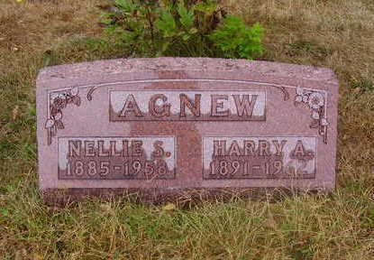 AGNEW, NELLIE S. - Adams County, Iowa | NELLIE S. AGNEW