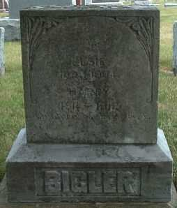 BIGLER, ELSIE - Allamakee County, Iowa | ELSIE BIGLER