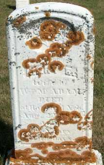 MCADAM, MARY E. - Allamakee County, Iowa | MARY E. MCADAM