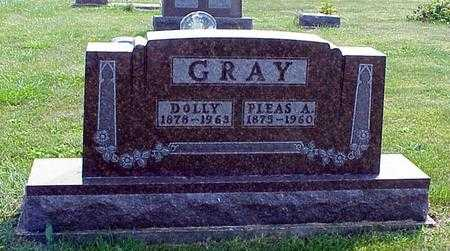 DAVIS GRAY, DOLLY - Appanoose County, Iowa | DOLLY DAVIS GRAY