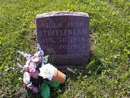 STUFFLEBEAM, VIOLA JEAN - Appanoose County, Iowa | VIOLA JEAN STUFFLEBEAM