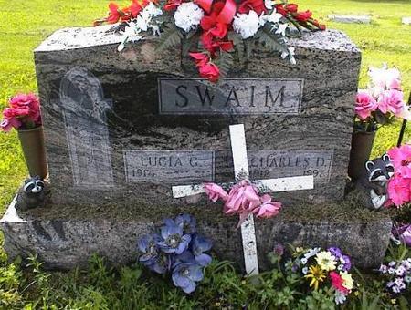 SWAIM, CHARLES D. - Appanoose County, Iowa | CHARLES D. SWAIM