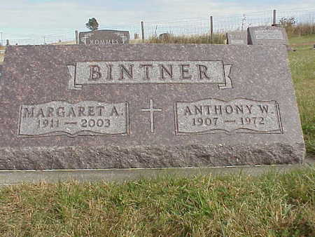 BINTNER, ANTHONY W. - Audubon County, Iowa | ANTHONY W. BINTNER