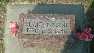 PAULSEN, DUANE LELAND - Audubon County, Iowa | DUANE LELAND PAULSEN