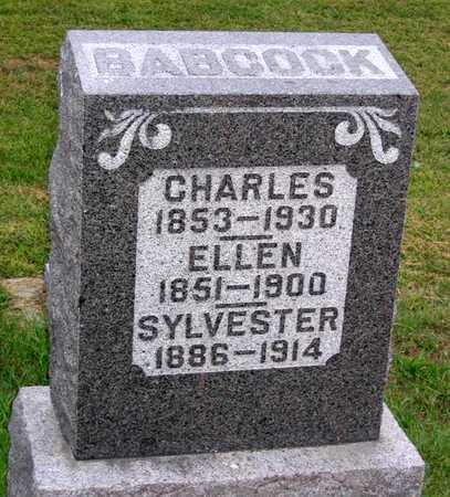 BABCOCK, SYLVESTER - Benton County, Iowa | SYLVESTER BABCOCK