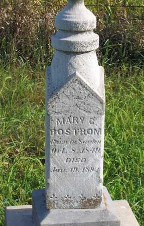 BOSTROM, MARY C. - Benton County, Iowa | MARY C. BOSTROM