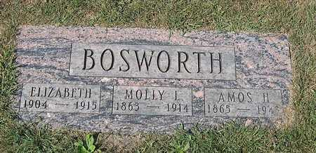 BOSWORTH, AMOS H. - Benton County, Iowa | AMOS H. BOSWORTH