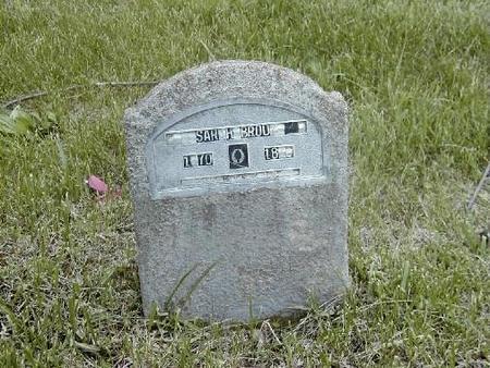 BRODY, SARAH - Benton County, Iowa | SARAH BRODY