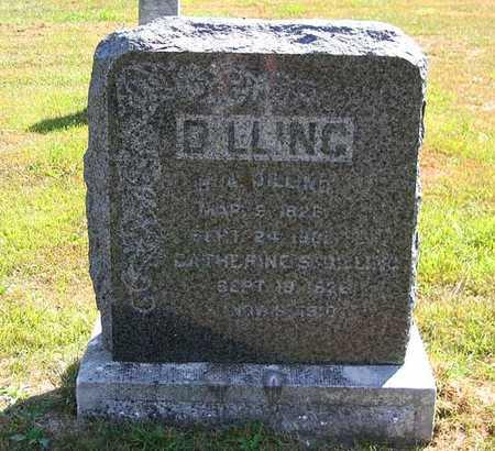 DILLING, CATHERINE S. - Benton County, Iowa | CATHERINE S. DILLING