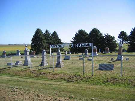 HOMER BIG GROVE, CEMETERY - Benton County, Iowa | CEMETERY HOMER BIG GROVE