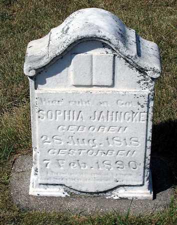 JAHNCKE, SOPHIA - Benton County, Iowa | SOPHIA JAHNCKE