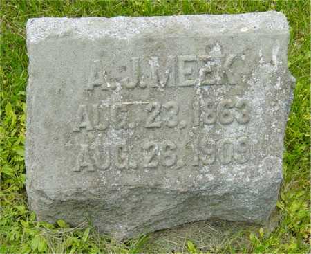 MEEK, A. J. - Benton County, Iowa | A. J. MEEK