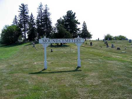 MOUND, CEMETERY - Benton County, Iowa | CEMETERY MOUND