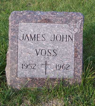 VOSS, JAMES JOHN - Benton County, Iowa | JAMES JOHN VOSS
