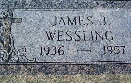 WESSLING, JAMES - Benton County, Iowa | JAMES WESSLING