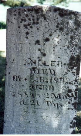 MILLER, ABRAHAM - Black Hawk County, Iowa | ABRAHAM MILLER