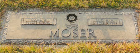 MOSER, LUCIA M. - Black Hawk County, Iowa | LUCIA M. MOSER