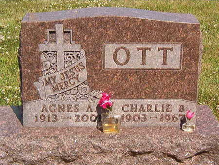 OTT, CHARLIE B. - Black Hawk County, Iowa | CHARLIE B. OTT