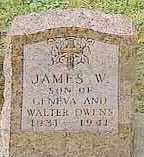 OWENS, JAMES W. - Black Hawk County, Iowa | JAMES W. OWENS