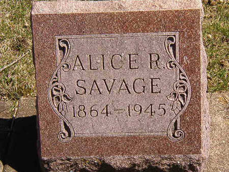 SAVAGE, ALICE ROWENA - Black Hawk County, Iowa | ALICE ROWENA SAVAGE