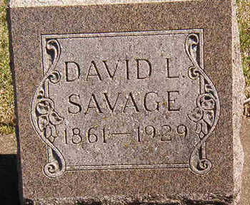 SAVAGE, DAVID L. - Black Hawk County, Iowa | DAVID L. SAVAGE