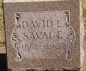 SAVAGE, DAVID LINCOLN - Black Hawk County, Iowa | DAVID LINCOLN SAVAGE