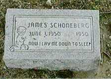 SCHONEBERG, JAMES - Black Hawk County, Iowa | JAMES SCHONEBERG