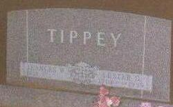 TIPPEY, LESTER - Black Hawk County, Iowa | LESTER TIPPEY