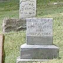WILTS, HENRY - Black Hawk County, Iowa | HENRY WILTS