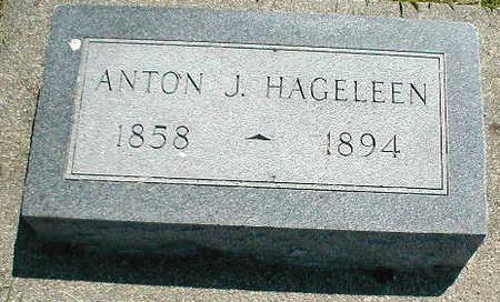 HAGELEEN, ANTON J. - Boone County, Iowa | ANTON J. HAGELEEN