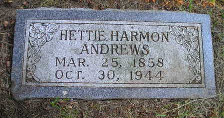 HARMON ANDREWS, HETTIE - Bremer County, Iowa | HETTIE HARMON ANDREWS