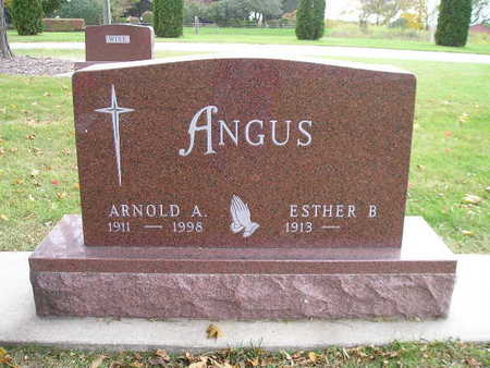 ANGUS, ESTHER B - Bremer County, Iowa | ESTHER B ANGUS