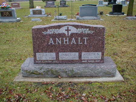 ANHALT, JAMES J - Bremer County, Iowa | JAMES J ANHALT