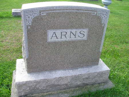 ARNS, LOUISA E - Bremer County, Iowa | LOUISA E ARNS