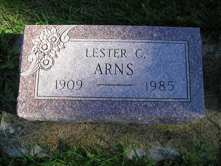 ARNS, LESTER C - Bremer County, Iowa | LESTER C ARNS