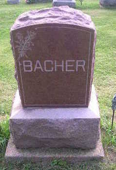 BACHER, LEO - Bremer County, Iowa | LEO BACHER