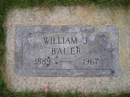 BAUER, WILLIAM J - Bremer County, Iowa | WILLIAM J BAUER