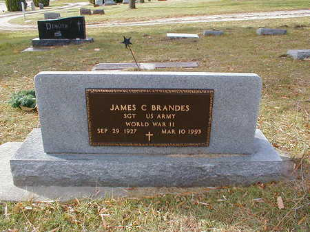 BRANDES, JAMES C - Bremer County, Iowa | JAMES C BRANDES
