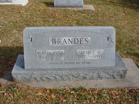 BRANDES, MARY JANE - Bremer County, Iowa | MARY JANE BRANDES