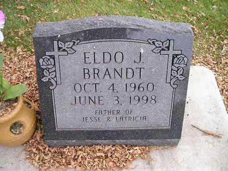 BRANDT, ELDO J - Bremer County, Iowa | ELDO J BRANDT