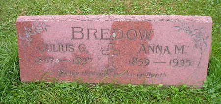 BREDOW, ANNA M - Bremer County, Iowa | ANNA M BREDOW