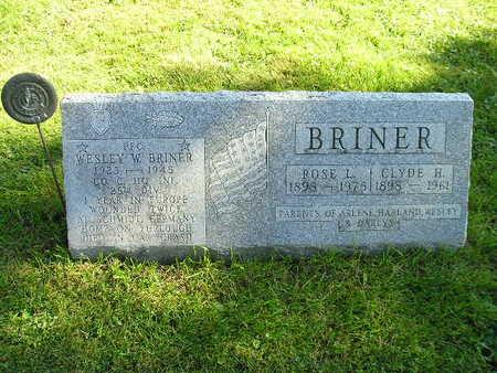BRINER, WESLEY W - Bremer County, Iowa | WESLEY W BRINER