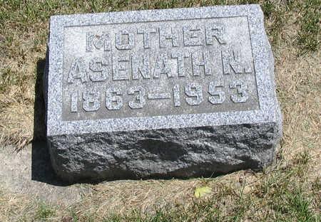 HATCH BURROW, ASENATH N - Bremer County, Iowa | ASENATH N HATCH BURROW
