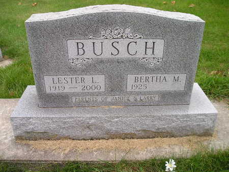 BUSCH, BERTHA M - Bremer County, Iowa | BERTHA M BUSCH